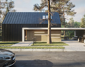 3D asset House in the forest