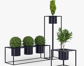 Box plant 3D