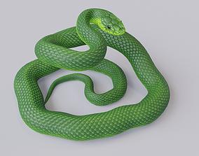 Rigged Green Mamba 3D model VR / AR ready