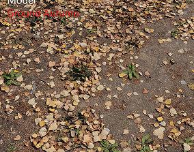 3D model Ground autumn scan 2