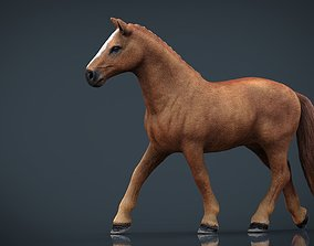 Realistic Horse 3D asset