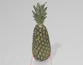Real life Pinapple 3D print model
