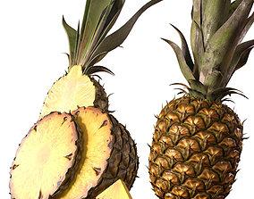 3D model PBR Pineapple slice