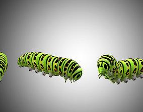 3D asset Caterpillar Low Poly Rigged