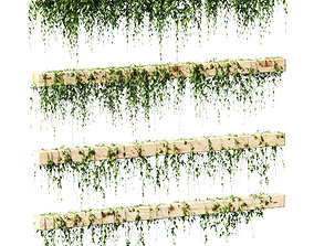 3D Ivy for beams or ceilings - 4 models