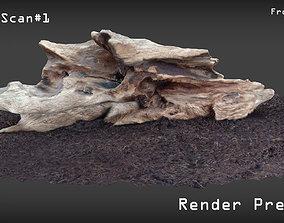 3D model High Detail Wood Scan 1