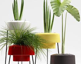Plants 89 3D model