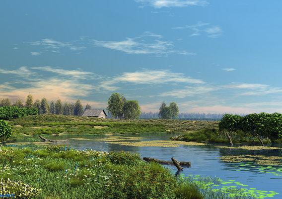 Deserted pond