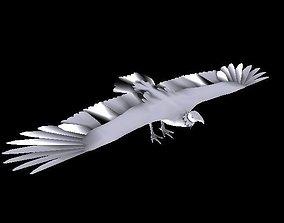 Turkey Vulture 3D asset