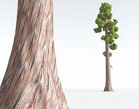 EVERYPlant Coastal Redwood Cartoon 02 --12 game-ready