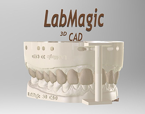 Digital Dental Unsectioned and Sectioned Model