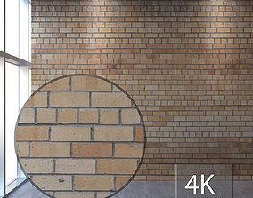 3D asset Brickwork 146