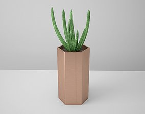Aloe Copper Potted Cactus 3D PBR