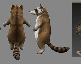 raccoon 3D animated