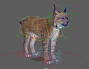 3D asset Lynx Rigged