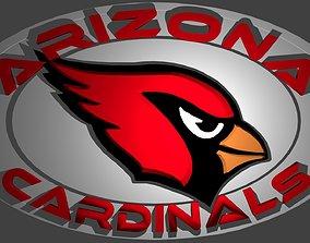 3D Arizona Cardinals