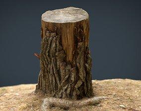 Tree Stump 3 3D asset
