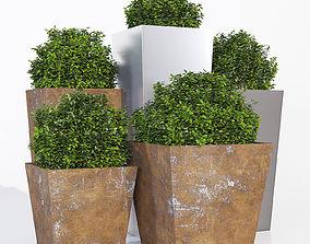 Planterworx tapered pot 3D