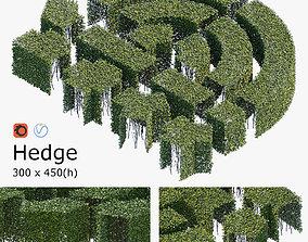 3D Hedge 300x450