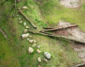 Hill of Trees 3D asset