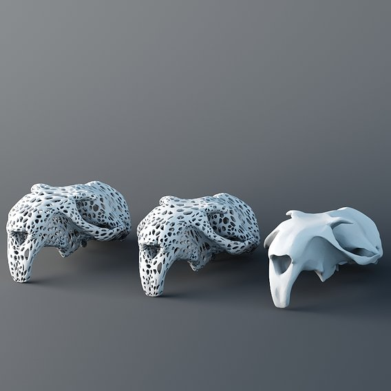 Skull Marmot 3d Print