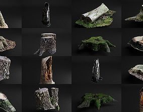 Highly Detailed Scanned Forest Assets 3D