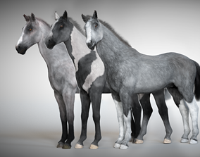 Rigged and Animated Stallion 3D