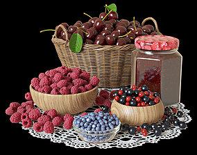 blueberries 3D Berries set