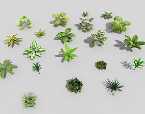 3D model 20 low poly tropical foliage pack