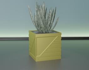 succulent plant pot 30 3D print model