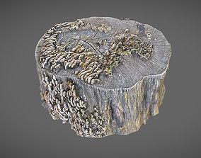 Stump with mushrooms 3D model