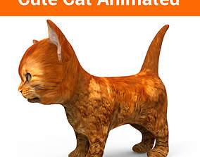 3D Cat Animated animated