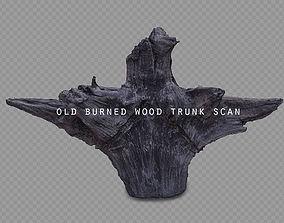 old burned wood trunk 3D asset