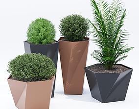 3D Five pot
