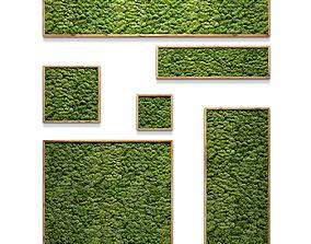 3D framed moss set