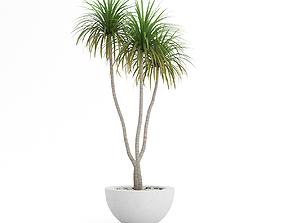 3D model GardenPlants