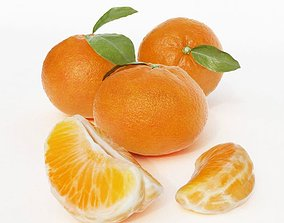 Whole Oranges And Slices 3D