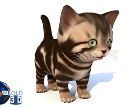 animated Cute Cat Lowpoly Rigged 3D Model