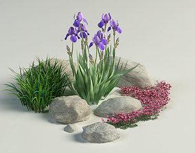 3D landscape composition iris grass rockfoils