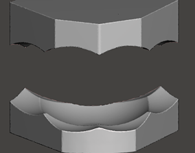upper and lower ortho model bases