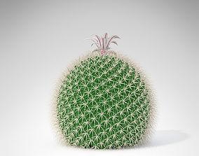 3D model Miller Pincushion