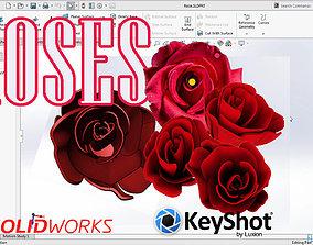 3D model Roses Flower