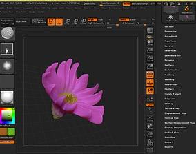 Claw fantasy flower artwork 3D