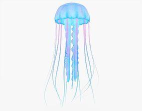 Blue Pink Jellyfish 3D asset