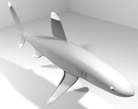 3D Shark - Whitetip