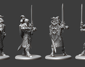 Paladin Order of the Sun Miniature 3D printable model
