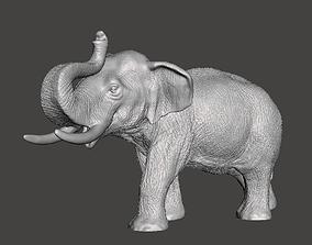 savannah 3D print model Elephant