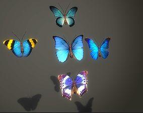 Butterflies Animated 3D asset
