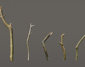 3D model 5 Sticks Pack 1 Photoscanned