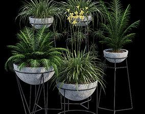 3D Hemisphere palm